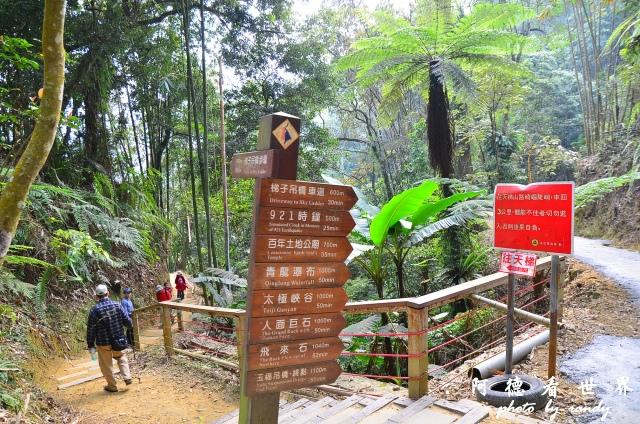 竹山梯子吊橋D7 022.JPG