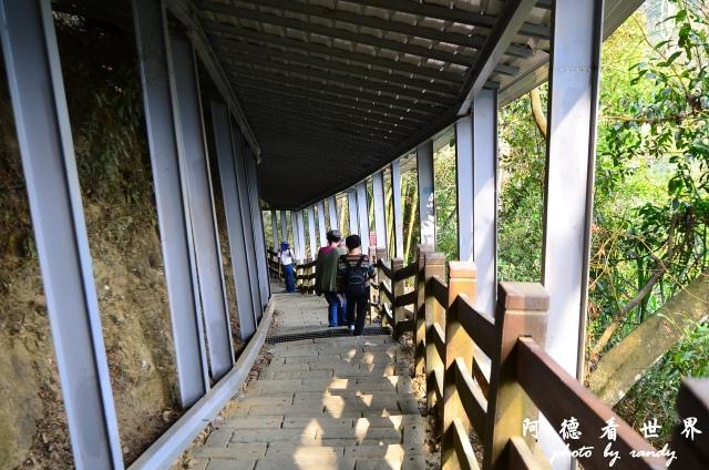 竹山梯子吊橋D7 026.JPG