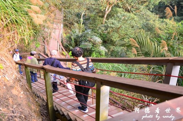 竹山梯子吊橋D7 032.JPG