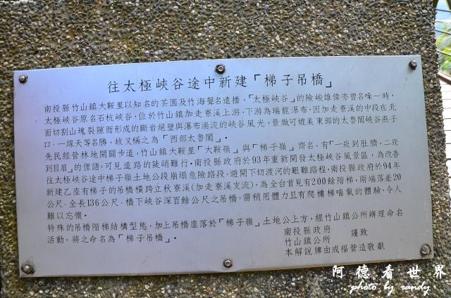 竹山梯子吊橋D7 038.JPG
