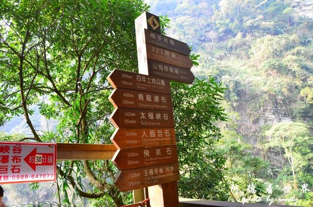 竹山梯子吊橋D7 055.JPG