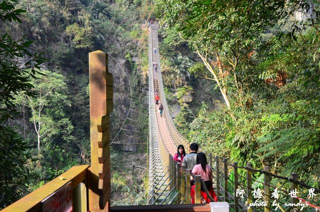 竹山梯子吊橋D7 059.JPG