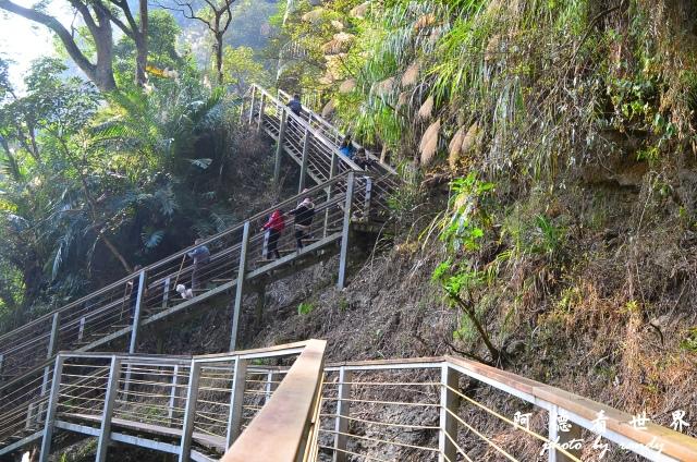 竹山梯子吊橋D7 062.JPG