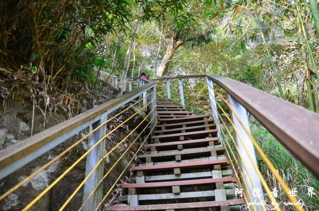 竹山梯子吊橋D7 066.JPG