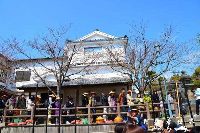柳川-太宰府D7 035.JPG