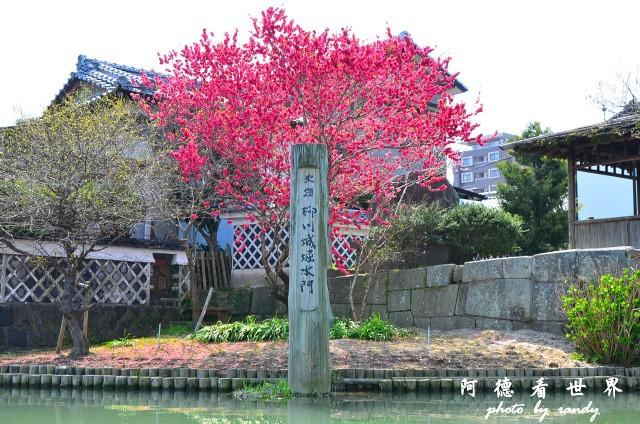 柳川-太宰府D7 044.JPG