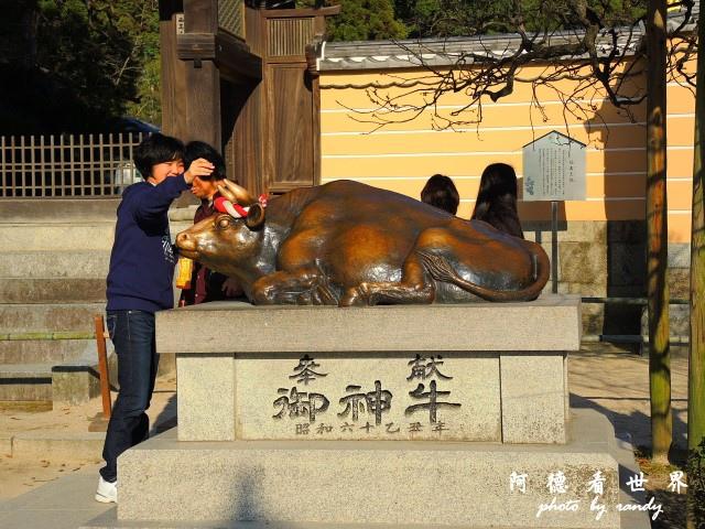 柳川-太宰府p77 153.JPG