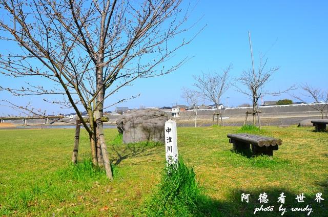 中津-湯布院D7 012.JPG