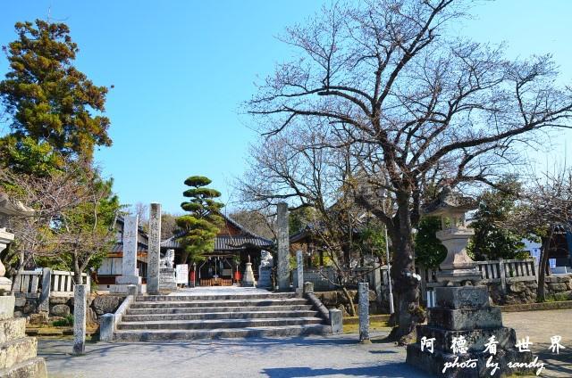 中津-湯布院D7 016.JPG