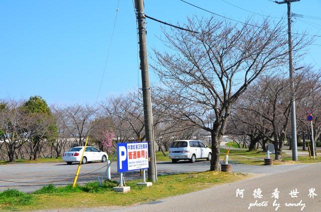 中津-湯布院D7 026.JPG