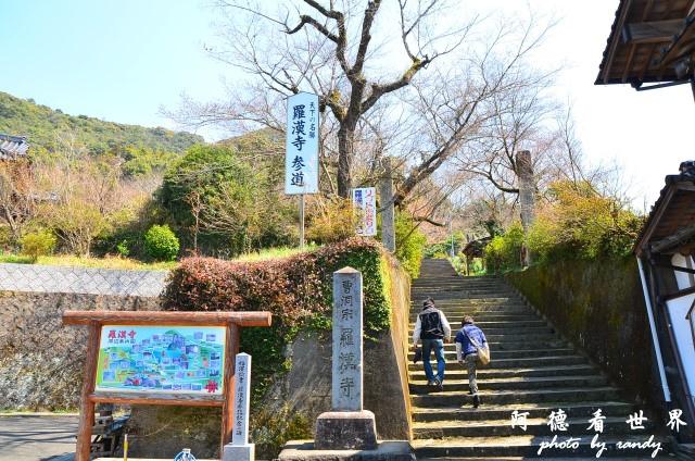 中津-湯布院D7 029.JPG