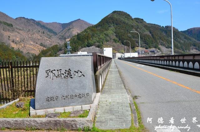 中津-湯布院D7 085.JPG