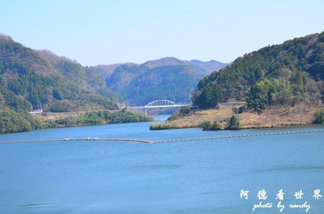 中津-湯布院D7 091.JPG