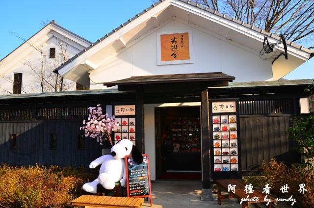 中津-湯布院D7 145.JPG