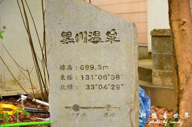 九重-阿蘇D7 092.JPG