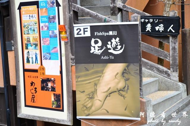 九重-阿蘇D7 108.JPG