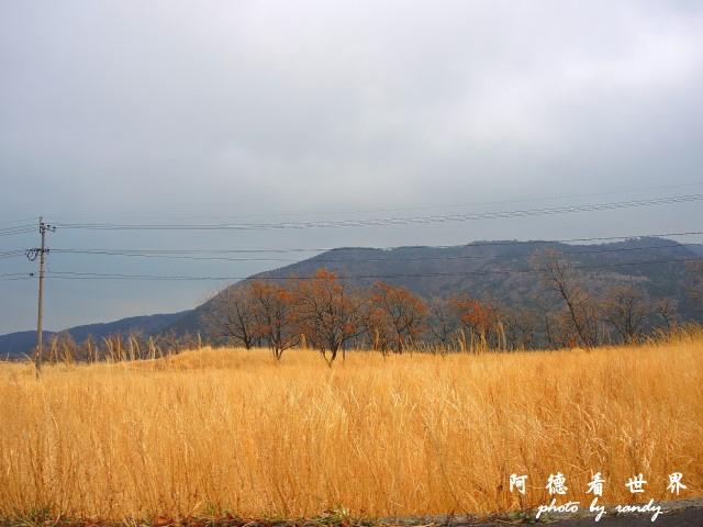 九重-阿蘇P77 094.JPG