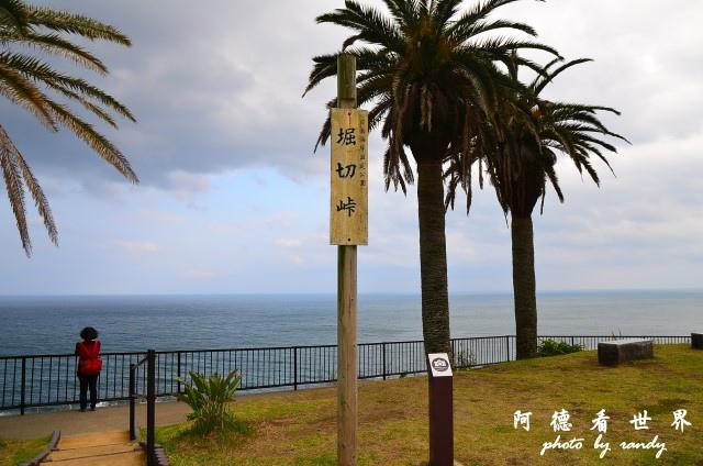 高千穗-日南D7 102.JPG