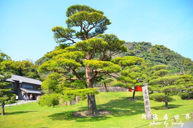 櫻島-鹿兒島D7 078.JPG
