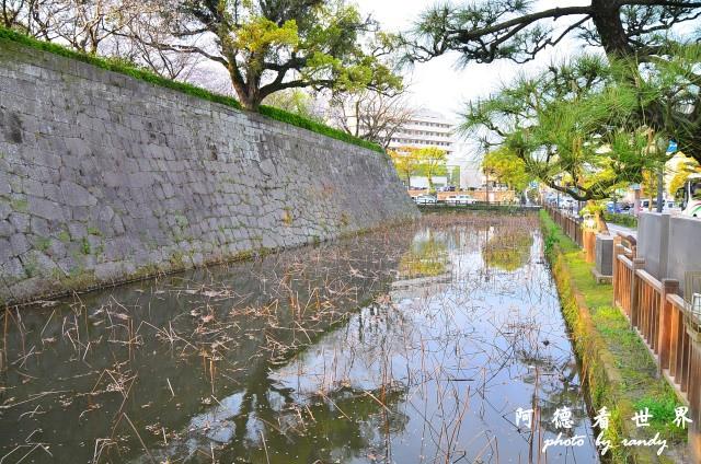 櫻島-鹿兒島D7 170.JPG