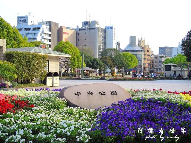 櫻島-鹿兒島P77 220.JPG