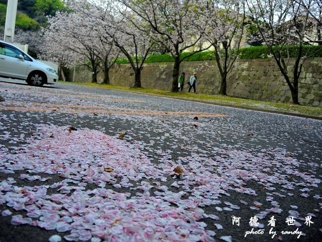 櫻島-鹿兒島P77 241.JPG