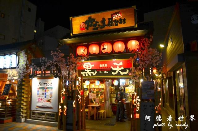 櫻島-鹿兒島D7 234.JPG