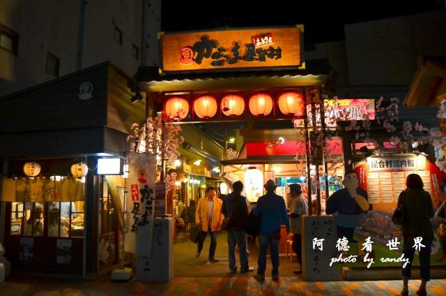 櫻島-鹿兒島D7 236.JPG