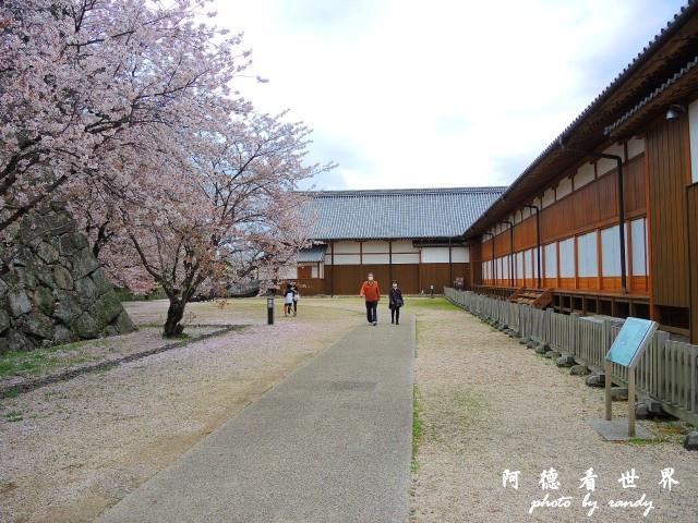 佐賀-嬉野P77 035.JPG