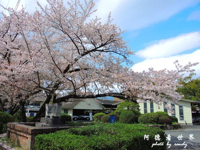 佐賀-嬉野P77 046.JPG