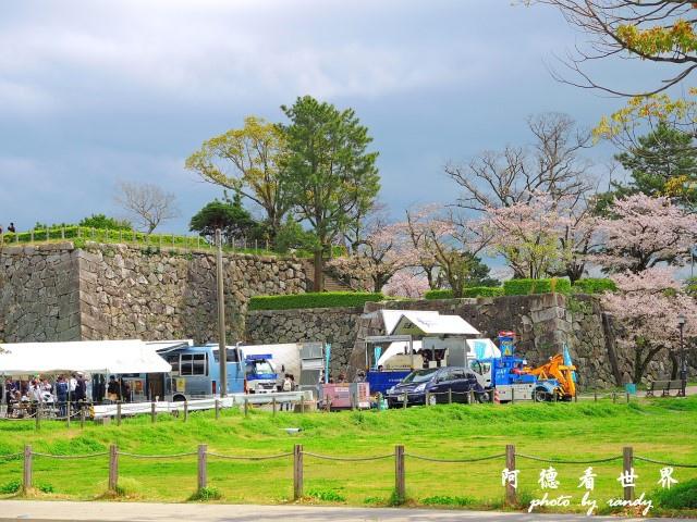 佐賀-嬉野P77 043.JPG
