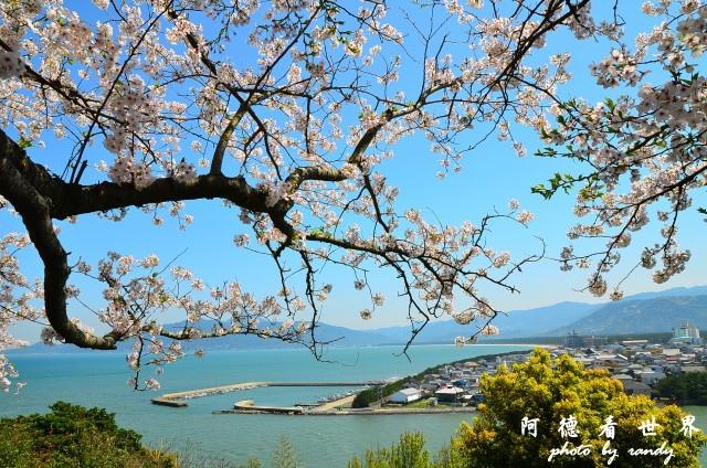 呼子-唐津-福岡D7 146.JPG