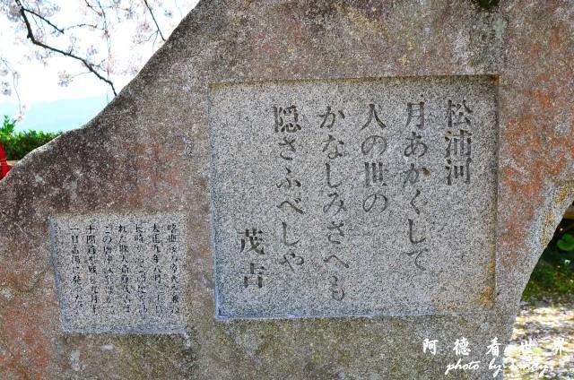 呼子-唐津-福岡D7 155.JPG