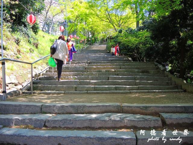 呼子-唐津-福岡P77 148.JPG