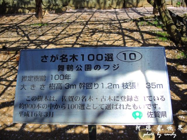 呼子-唐津-福岡P77 153.JPG