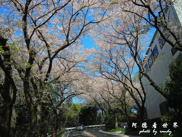 呼子-唐津-福岡P77 214.JPG