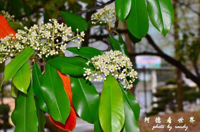 長崎-運河城D7 046.JPG
