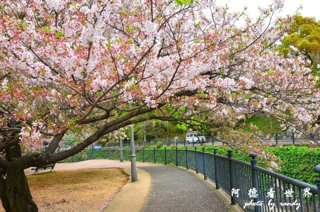 長崎-運河城D7 057.JPG