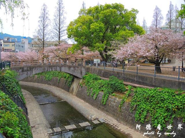 長崎-運河城P77 029.JPG