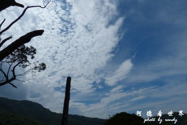 熊空茶園-三耕居FZ 091.JPG