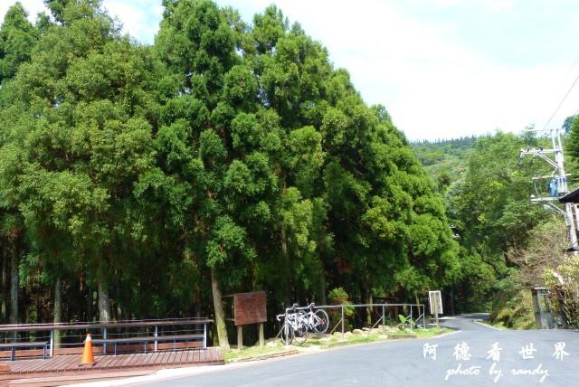 熊空茶園-三耕居FZ 119.JPG
