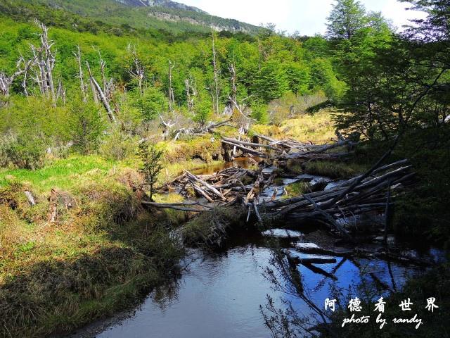 ushuaia4P77 139.JPG
