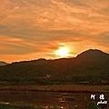 金山濕地0609D810 014.JPG