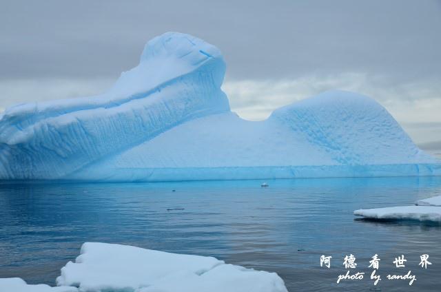 南極4D7 363.JPG