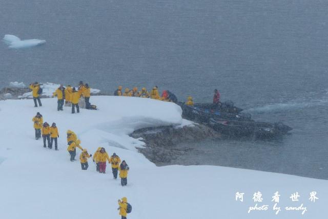 南極4FZ (90).JPG