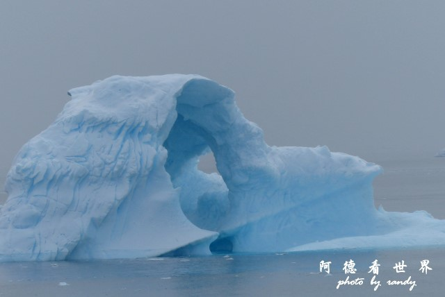 南極4FZ (191).JPG