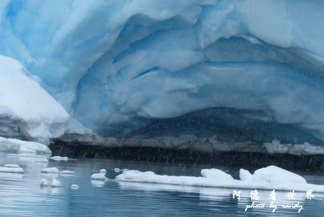 南極4FZ (328).JPG