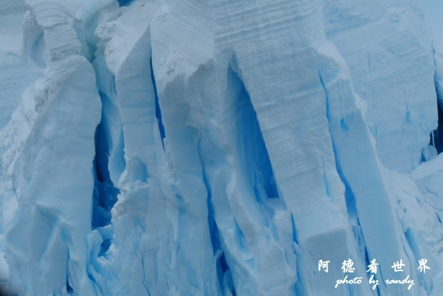 南極4FZ (364).JPG