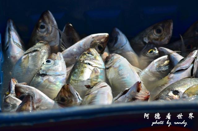 大溪漁港0630D7000 047.JPG