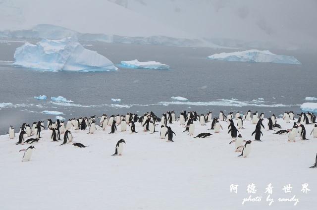 南極5D7 169.JPG